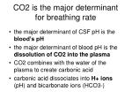 co2 is the major determinant for breathing rate
