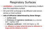 respiratory surfaces