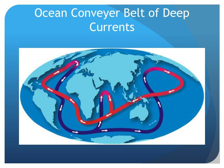Ocean Conveyer Belt of Deep Currents