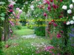 n o desejo que neste ano tenha todas as flores do jardim