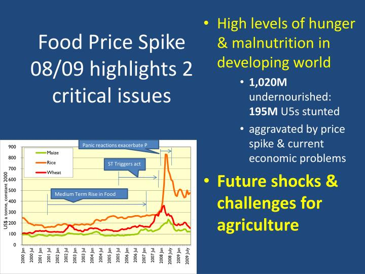 Food price spike 08 09 highlights 2 critical issues