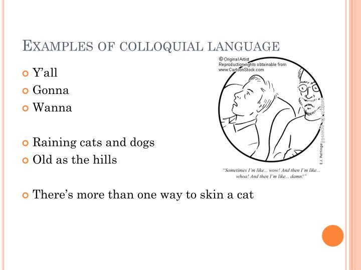 S Slang For Cat