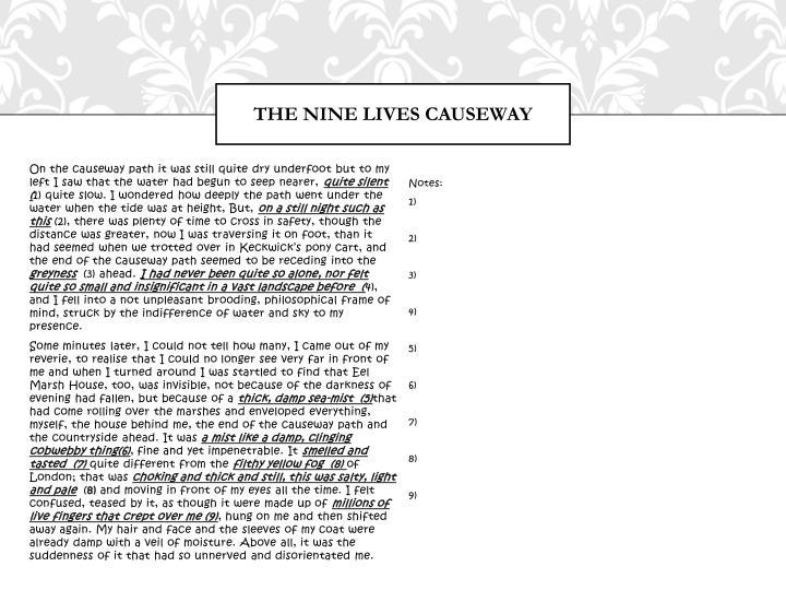 The nine lives causeway