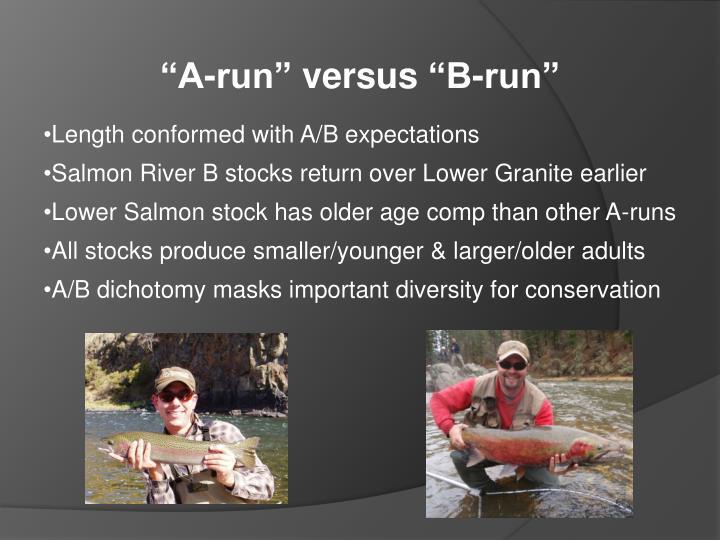 """""""A-run"""""""