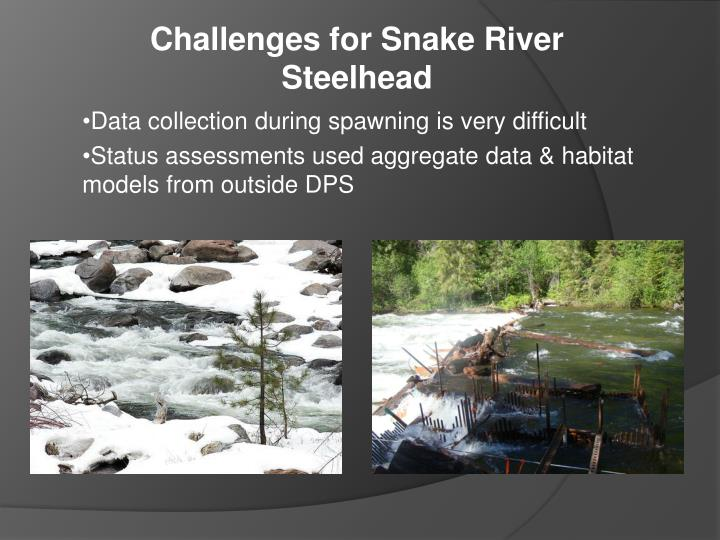 Challenges for Snake