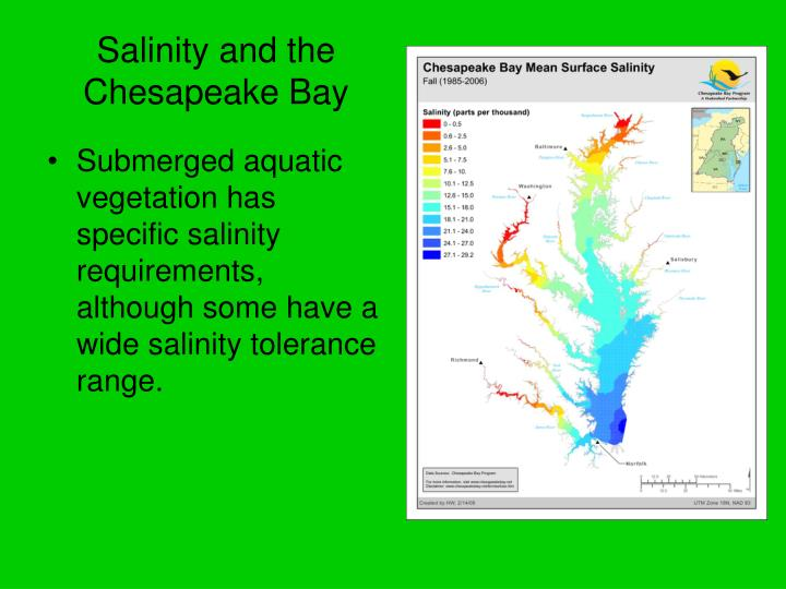 Salinity and the chesapeake bay