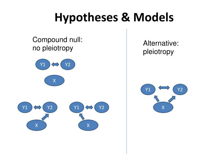 Hypotheses models