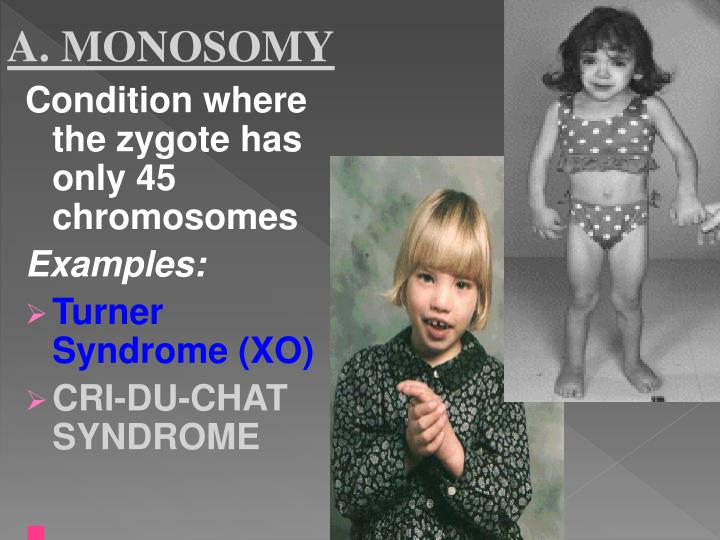A. MONOSOMY