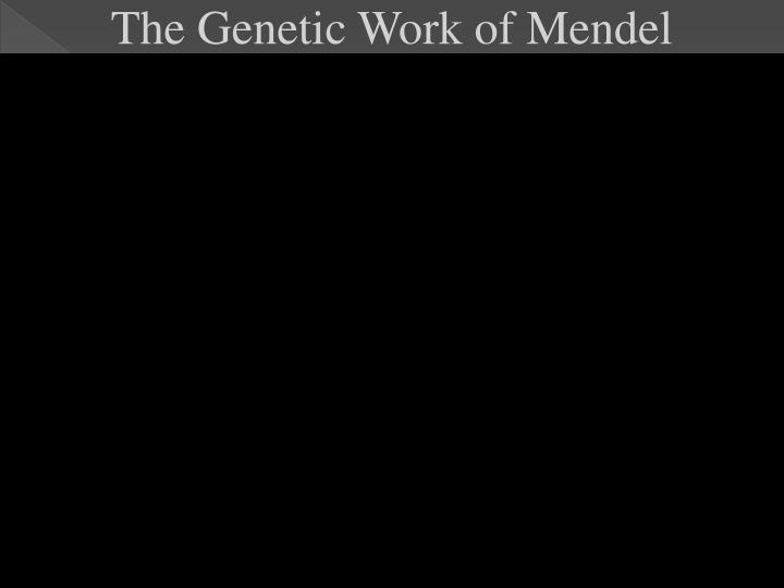 The Genetic Work of Mendel