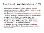 functions of lipopolysaccharides lps