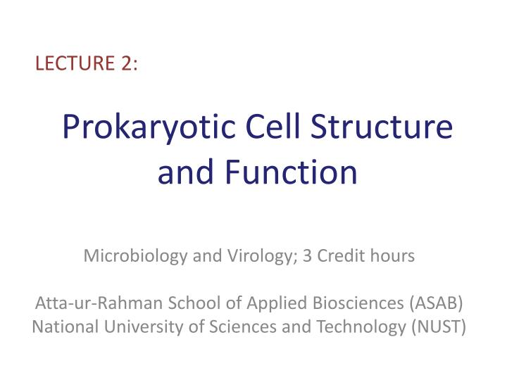 Prokaryotic cell structure and function