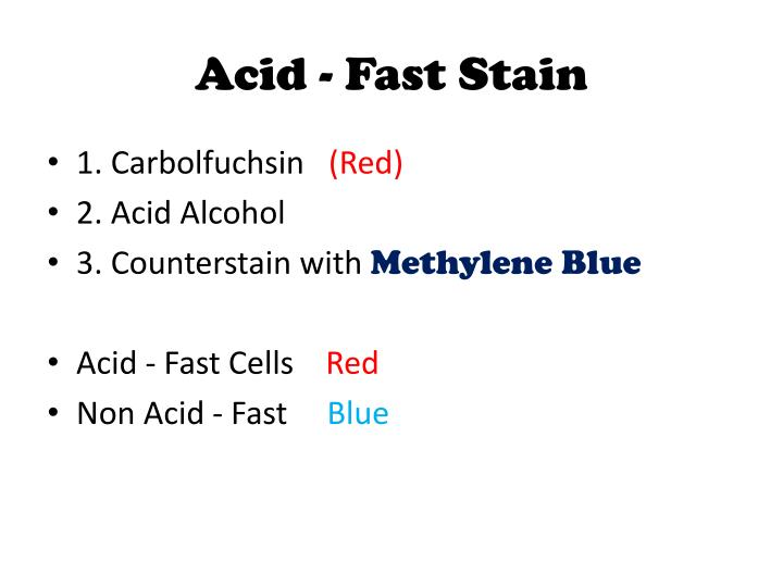 Acid - Fast Stain