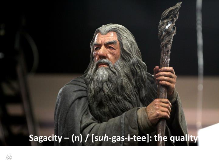 Sagacity – (n) / [s