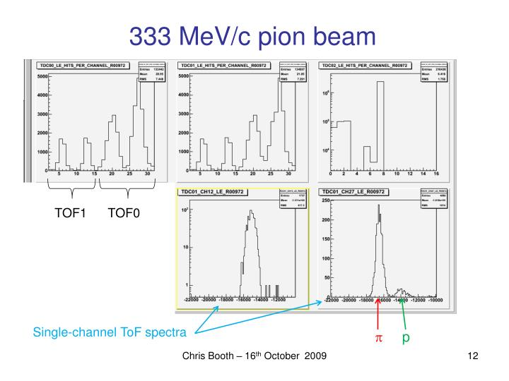 333 MeV/c pion beam
