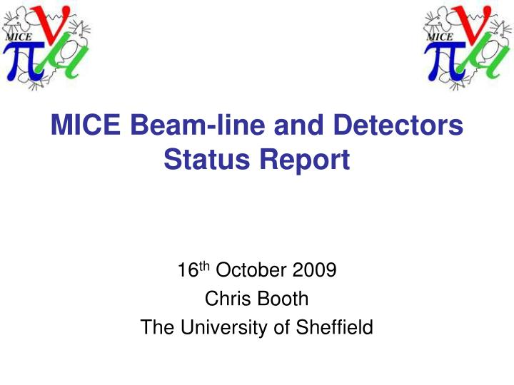 Mice beam line and detectors status report