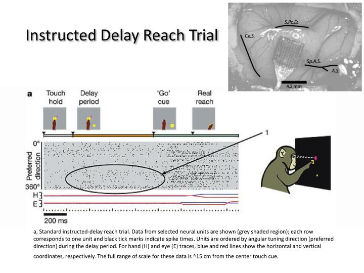 Instructed Delay Reach Trial