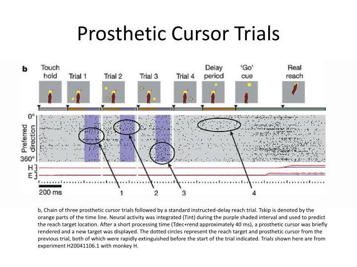 Prosthetic Cursor Trials