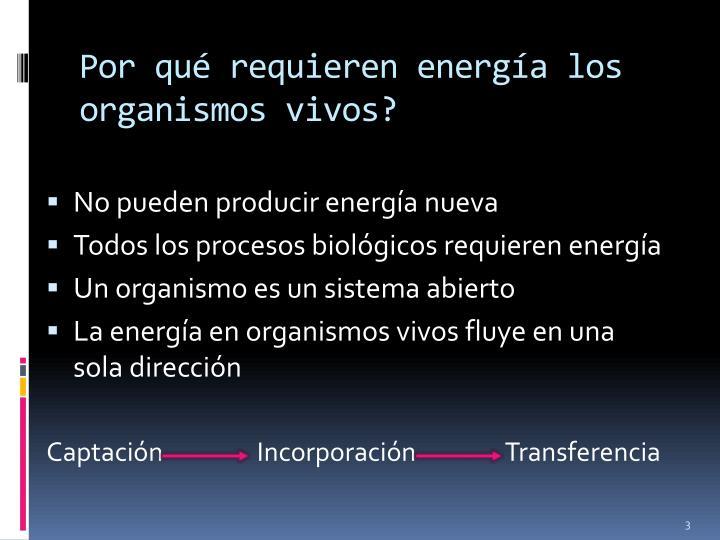 Por qué requieren energía los organismos vivos?