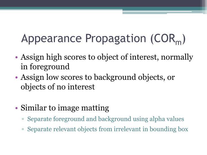 Appearance Propagation