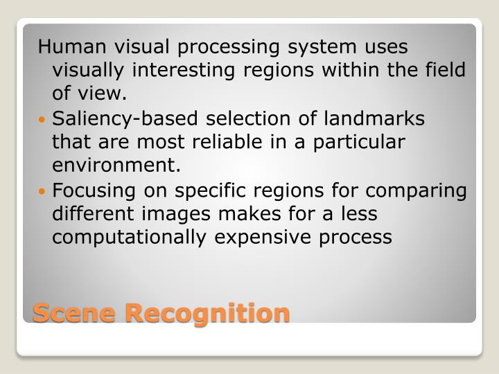 Human visual processing system uses visually interesting regions within the field of view.