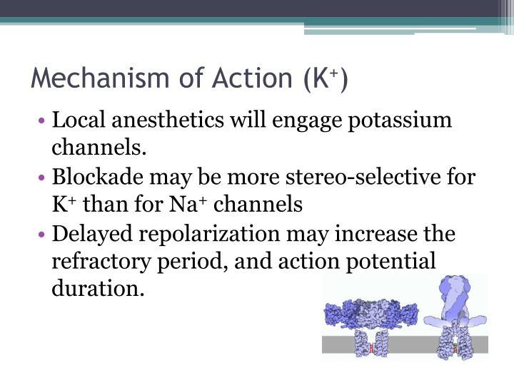 Mechanism of Action (K