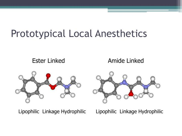 Prototypical Local Anesthetics