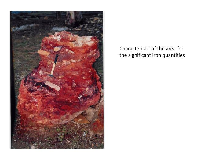 Characteristic of the area for the significant iron quantities