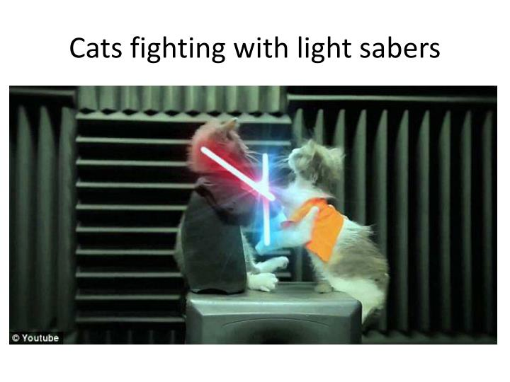 Cats fighting with light sabers