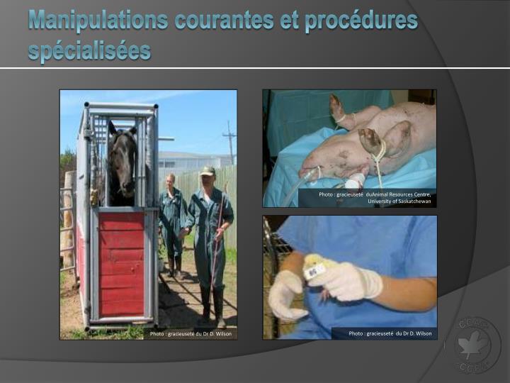 Manipulations courantes et procédures spécialisées