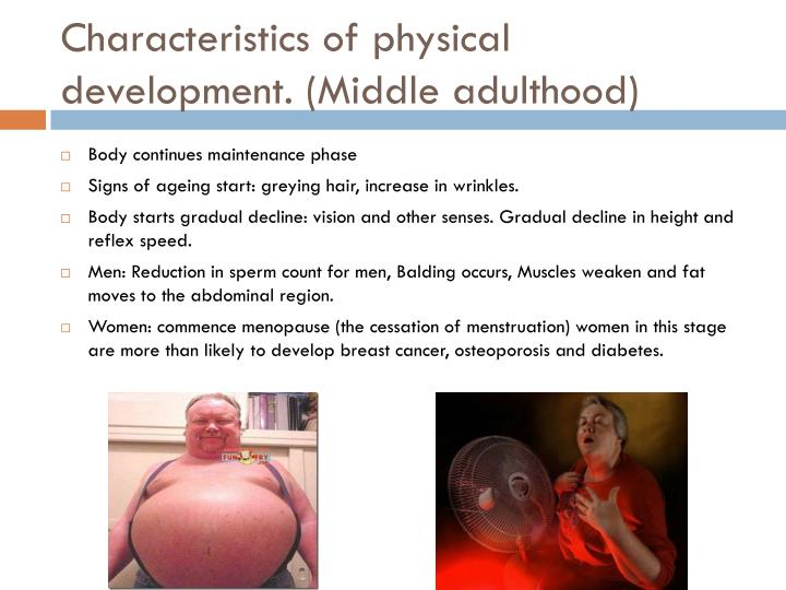 Characteristics of physical development. (Middle adulthood)