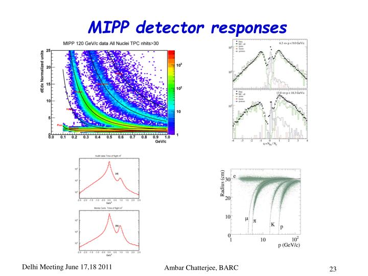 MIPP detector responses