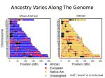 ancestry varies along the genome1