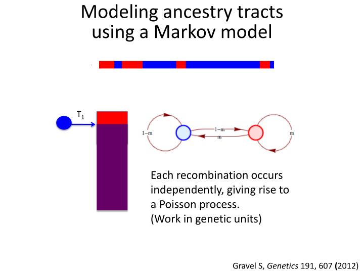 Modeling ancestry tracts