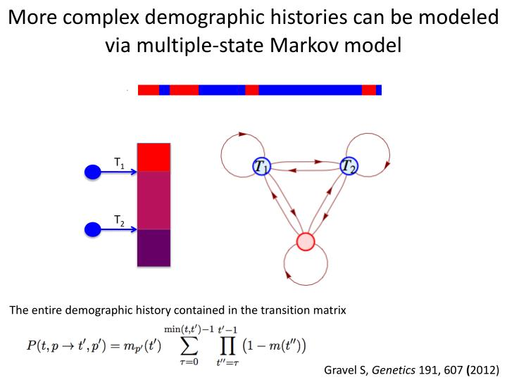 More complex demographic histories can be modeled via multiple-state Markov model