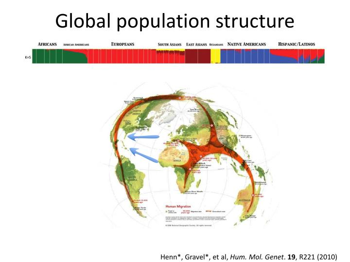 Global population structure