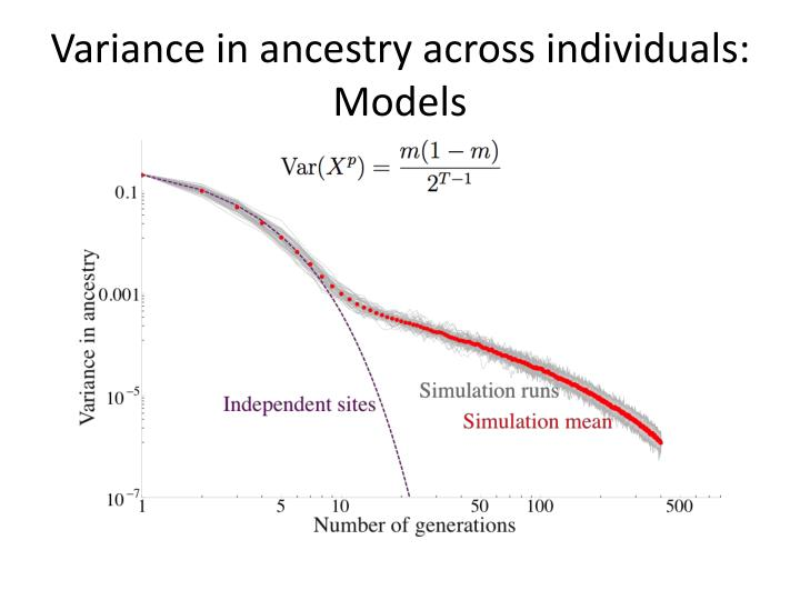Variance in ancestry across individuals: