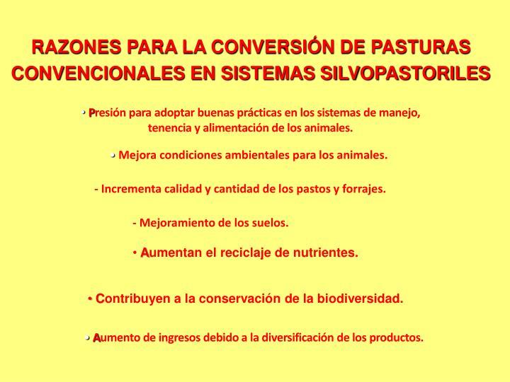 RAZONES PARA LA CONVERSIÓN DE PASTURAS CONVENCIONALES EN SISTEMAS SILVOPASTORILES