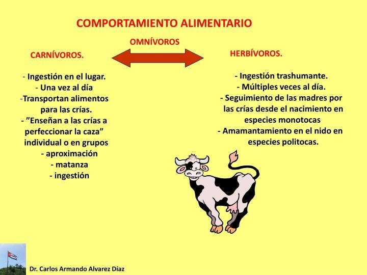 COMPORTAMIENTO ALIMENTARIO
