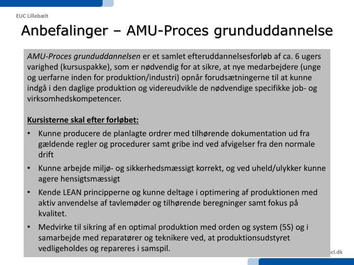 Anbefalinger – AMU-Proces grunduddannelse
