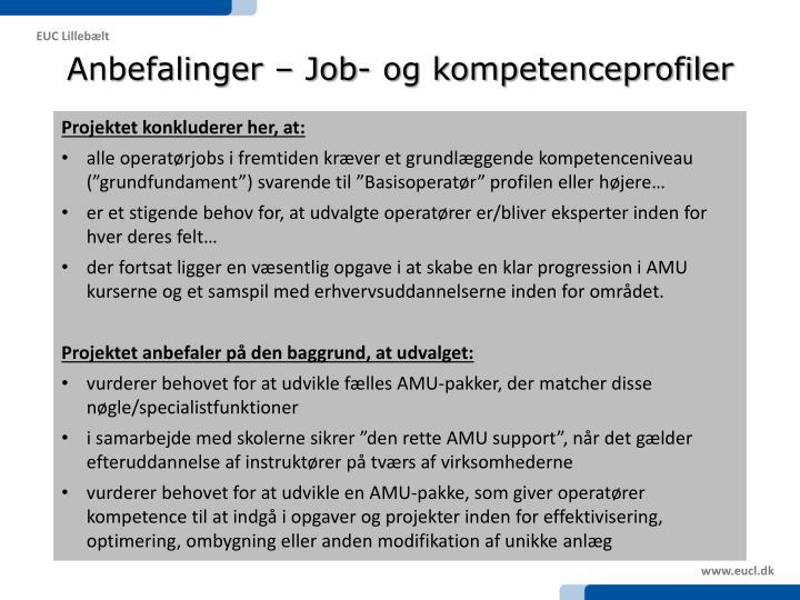 Anbefalinger – Job- og kompetenceprofiler
