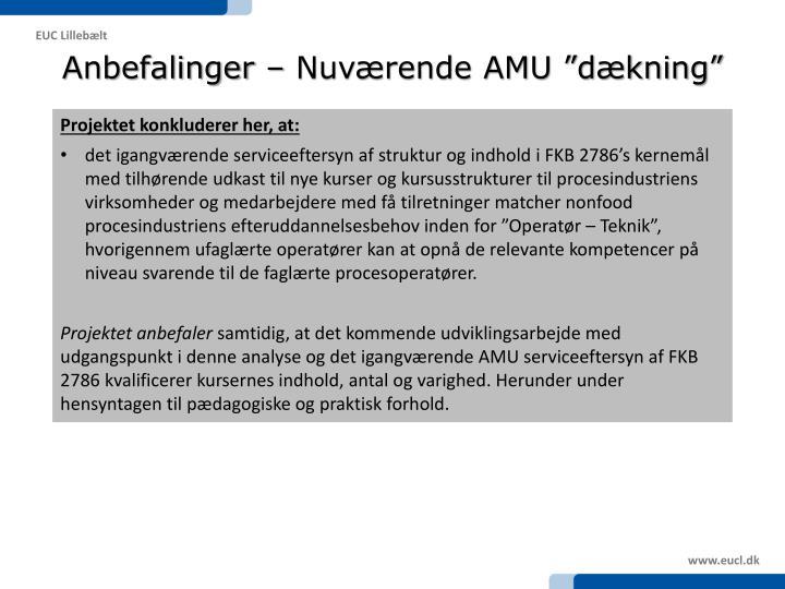"""Anbefalinger – Nuværende AMU """"dækning"""""""