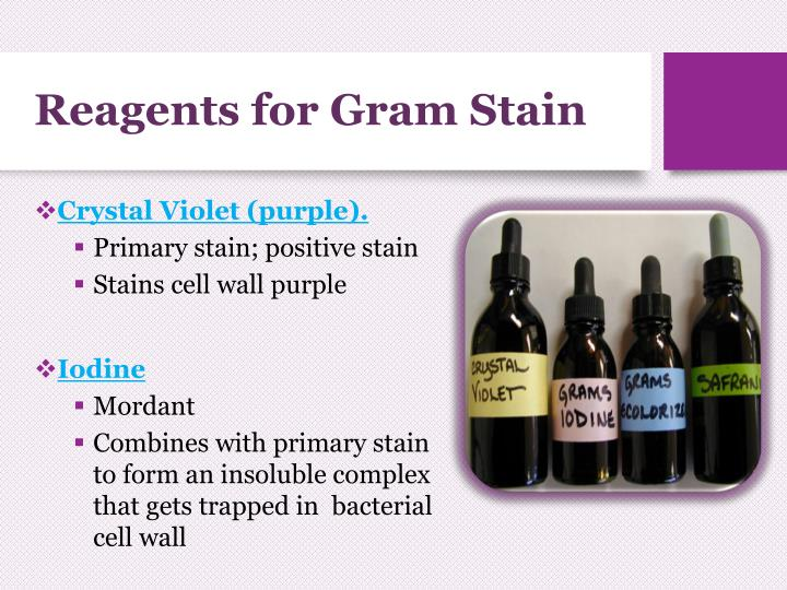 Reagents for Gram Stain