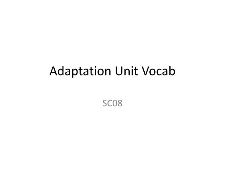 Adaptation unit vocab