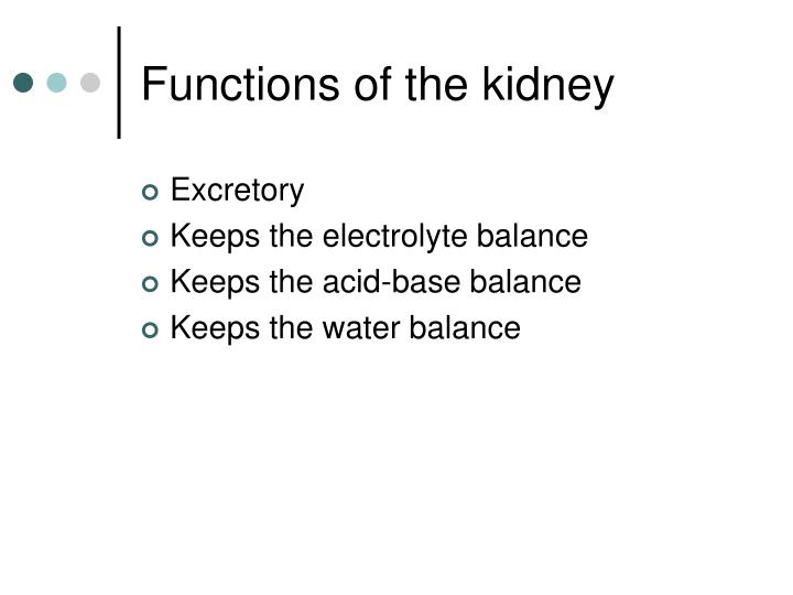 Functions of the kidney