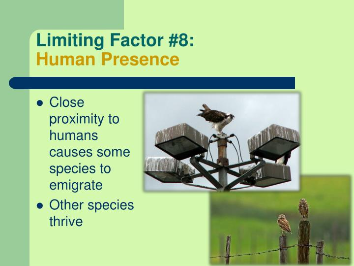 Limiting Factor #8: