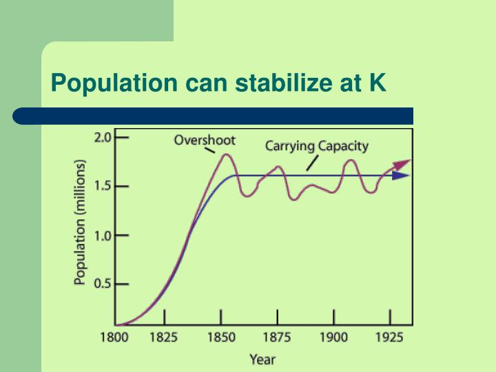 Population can stabilize at K