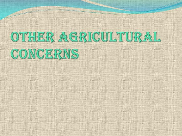 Other Agricultural concerns