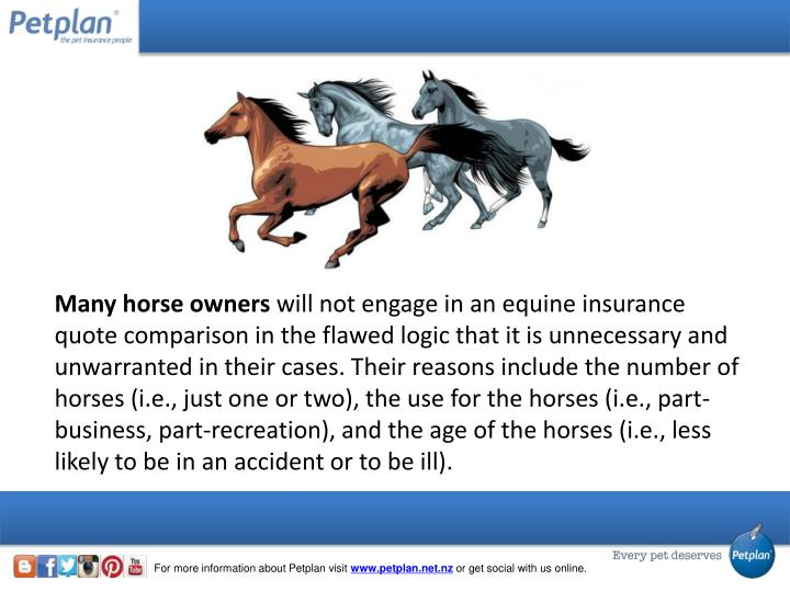 Many horse owners