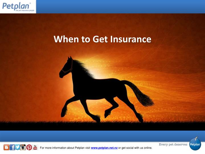 When to Get Insurance