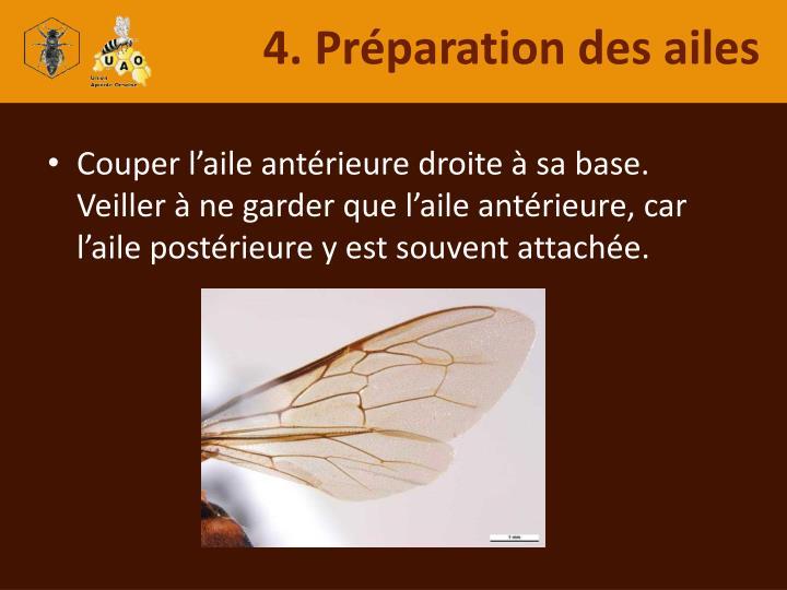 4. Préparation des ailes